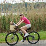 En bicicleta con tus perros, ¡el paseo ideal!