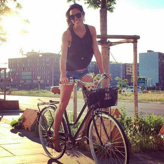 cesta bicicleta perro